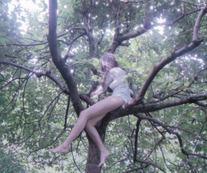 nature, pale, and the virgin suicides image