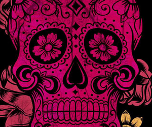 calavera, pink, and flowers image
