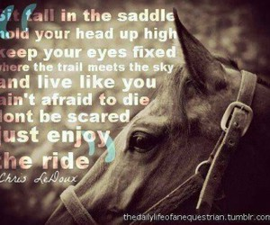 horse, quote, and ride image