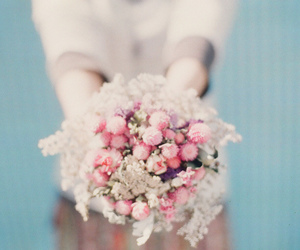 flowers, lovely, and cute image