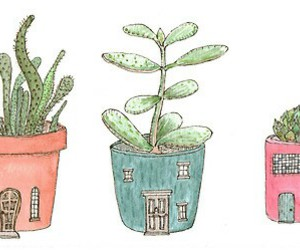 plants, cactus, and draw image