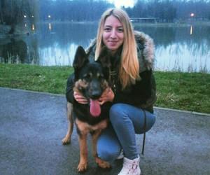 blonde, german shepherd, and puppy image