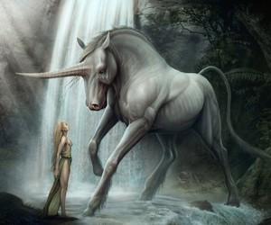 unicorn and fantasy image