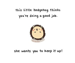 hedgehog, cute, and quotes image