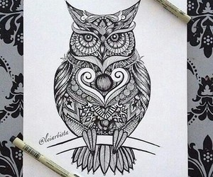 drawing, draw, and owl image