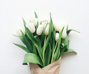 flowers, gift, and green image