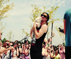 alex gaskarth, all time low, and dog image