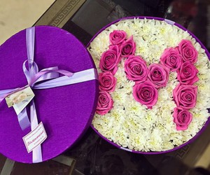 flowers, M, and rose image