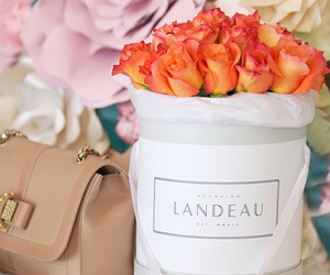 accessories, bouquet, and boutique image