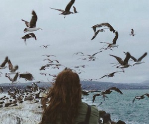 girl, bird, and sea image