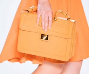 bag, elie saab, and dress image