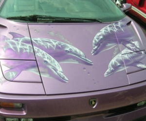 car, dolphin, and purple image