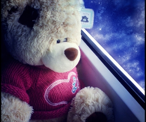bear, waiting, and where are you now image