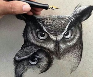 art, black and white, and owl image