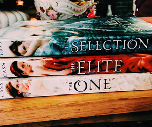 bookaholic, theone, and theselection image