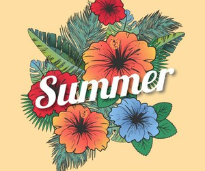 summer, wallpaper, and flowers image