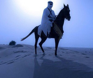 horse, عربي, and desert image