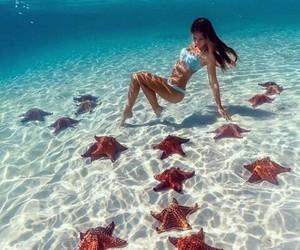 love it, sea, and stars image