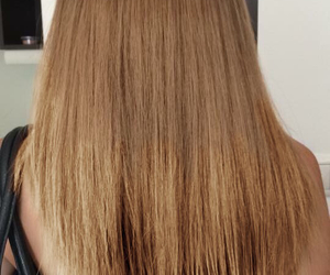 blond, brown, and color image