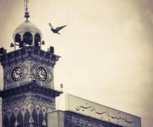 عشق, قلب, and شيعه image