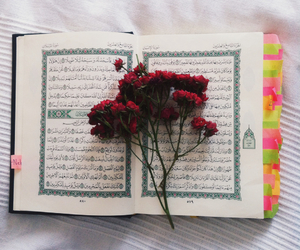 flowers, islam, and qur'an image