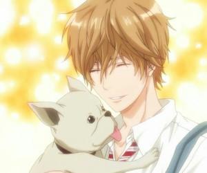 anime, anime boy, and wolf girl & black prince image