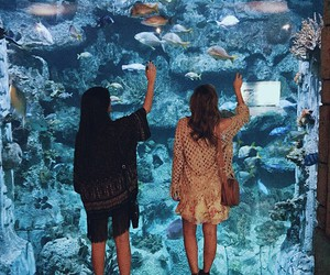aquarium, fishes, and sisters image