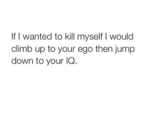 funny, ego, and iq image