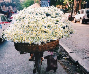 flowers, vintage, and hipster image