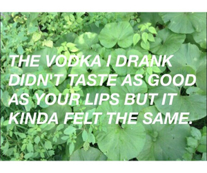 vodka, drunk, and lips image