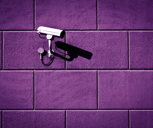 camera, purple, and header image