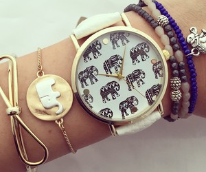 elephant, watch, and accessories image
