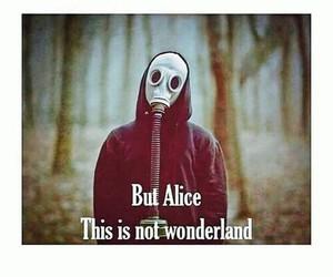 alice, sadness, and wonderland image