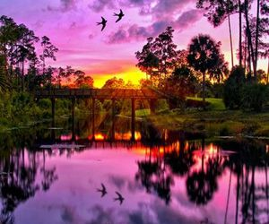 nature, sunset, and sky image