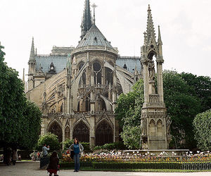 beautiful, france, and notre dame image