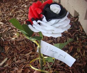 pokemon, rose, and flowers image