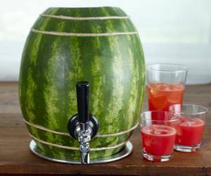 watermelon and diy image