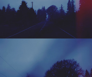 trees, blue, and road image