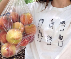 peach, fruit, and plants image