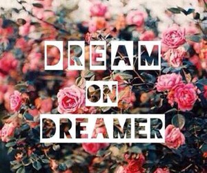 Dream, flowers, and dreamer image