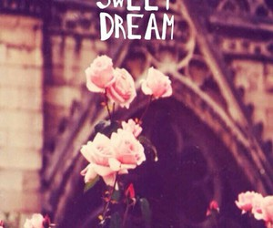 Dream, sweet, and flowers image