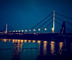 bridge, novi sad, and danube image