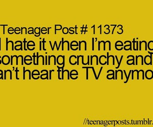 tv, food, and hate image
