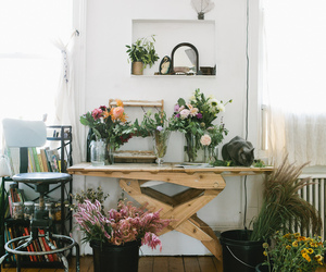 flowers, plants, and home image