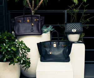 bags, love, and celine image