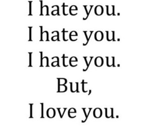 funny, hate, and loveyou image