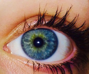 eye, beauty, and blue eyes image