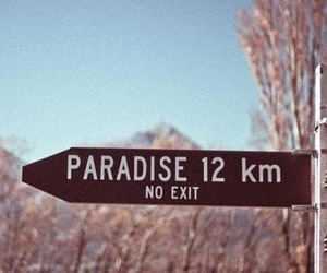 paradise and no exit image