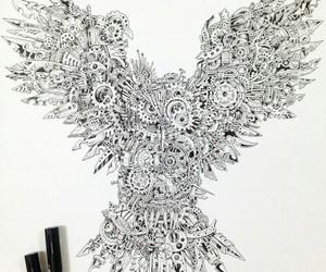 b&w, beautiful, and bird image