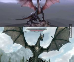 gamer and skyrim image